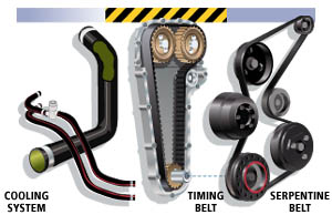Drive belts and Hose Inspection